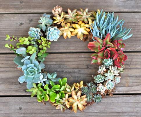 Guirlanda de Suculentas - Succulents Wreath1