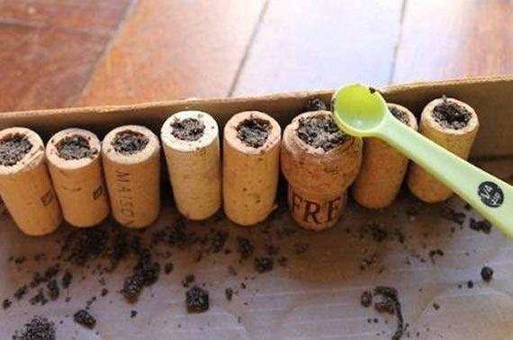 como-plantar-suculentas-em-rolhas-4